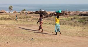 Runga - the women carry up the rift valley cliff all the fish in the morning and then come down with wood, Uganda